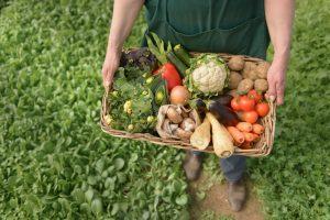 prednost organske proizvodnje 2